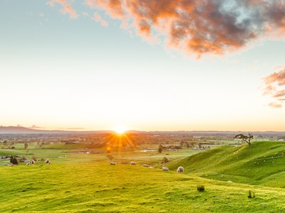 HERO - Best-sunset-views-Waikato WEBSITE